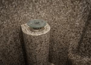 parownik w sauna publiczna